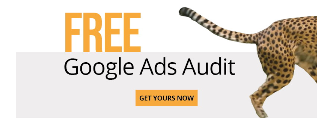 free audit banner